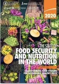 FOOD_SECURITY_2020