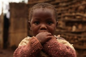 CCR These 3 Cs can increase food insecurity in Africa, warn experts