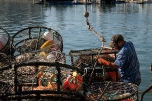 Hooking of crab pots