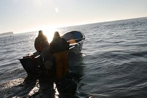 MSC_aims_to_increase_activity_and_drive_sustainable_fishing_in_Mexico