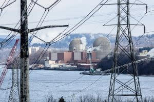 The Indian Point Power Plant