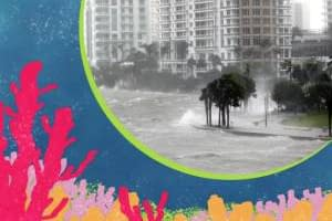 CCR Op-Ed_ How to save beaches and coastlines from climate change disasters