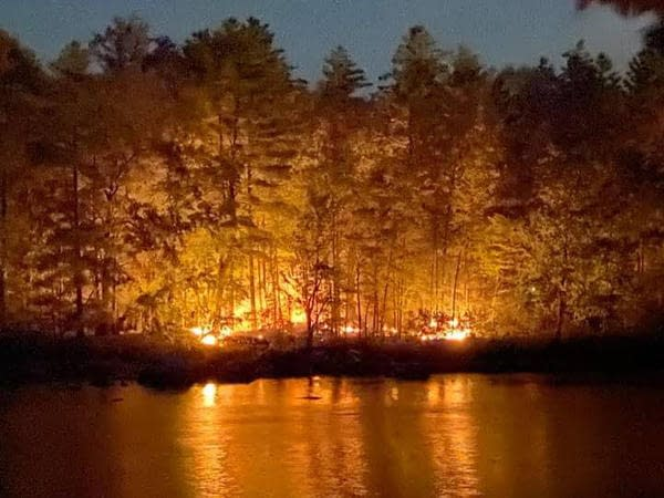 Forestfire_ccr